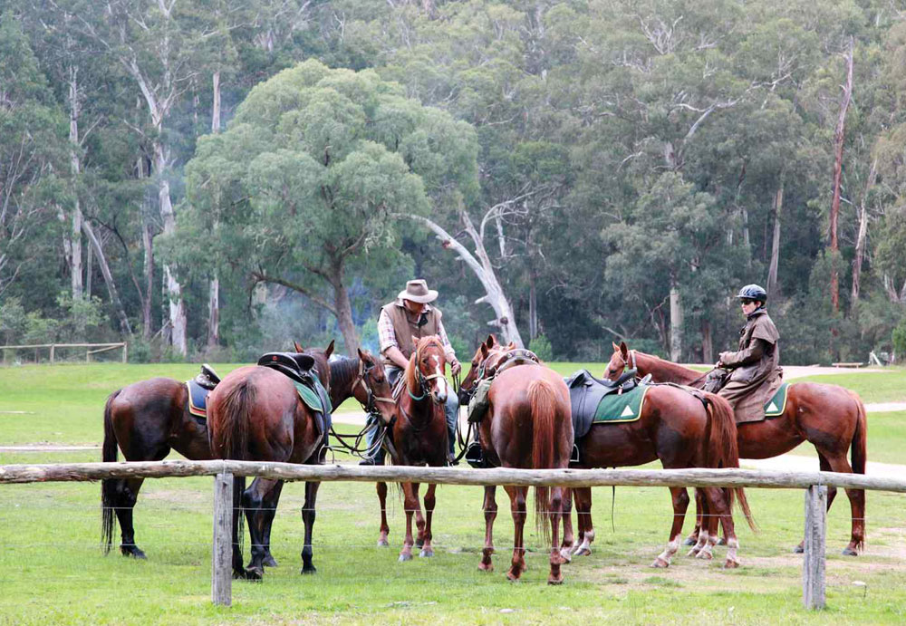 horse riding snowy river
