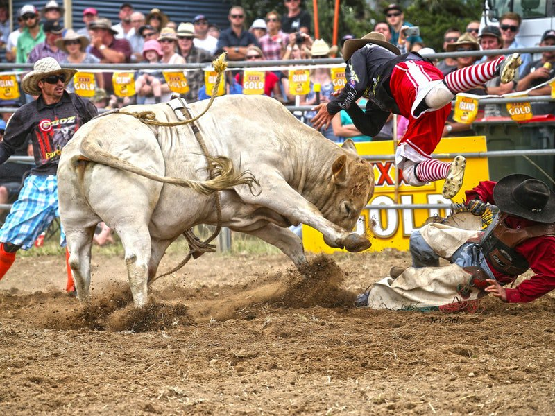 Man From Snowy River Rodeo
